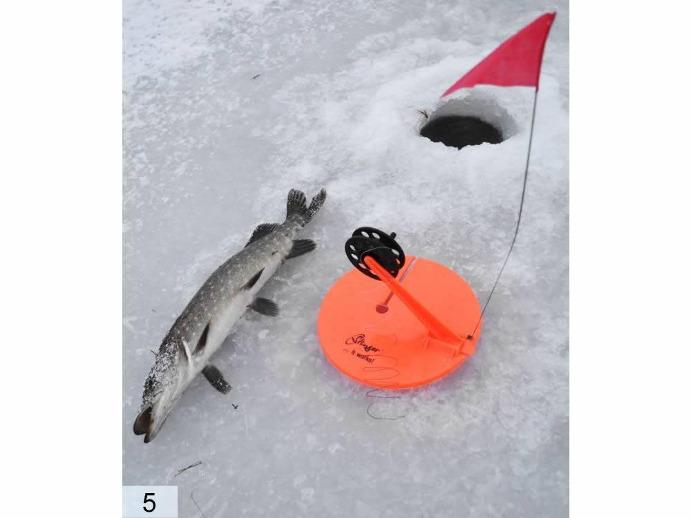 6 лучших жерлиц для зимней рыбалки — рейтинг 2019