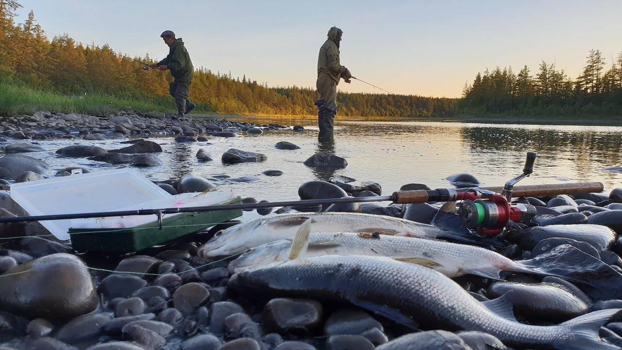Мунха. зимняя рыбалка в якутии!!! (ловля карася зимой.)