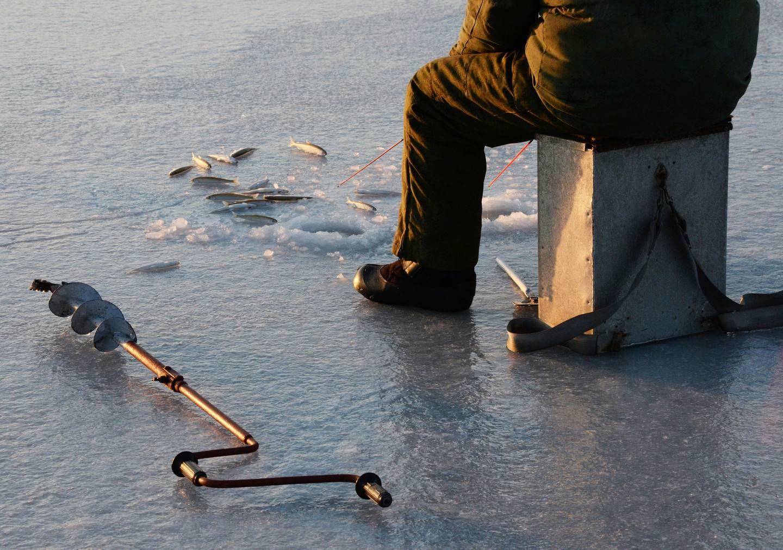 Суши блесну: опасно рыбачить из-за тонкого льда на берди и бердском заливе