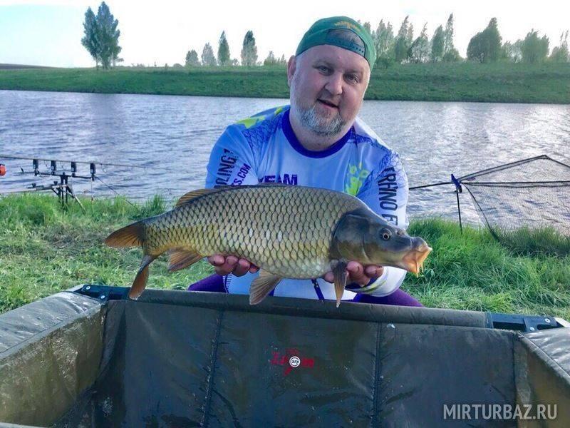 Рыбалка в орловской области - читайте на сatcher.fish