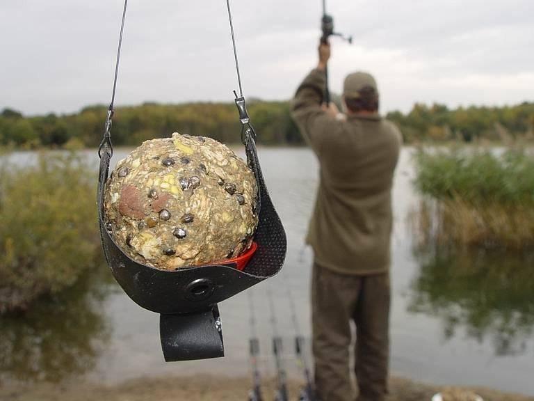 Пареный горох – отличная насадка для летней рыбалки на сазана и леща
