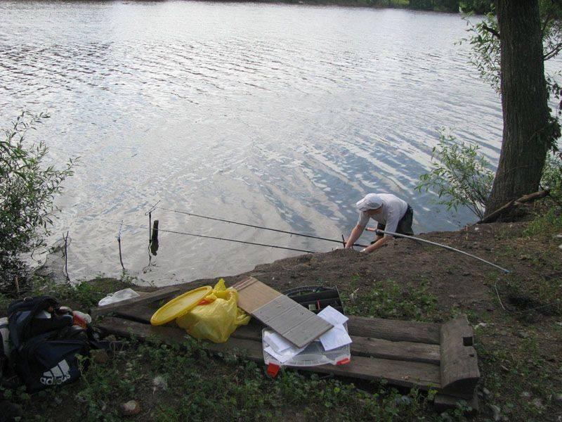Барыбино - рыбалка платная в домодедовском районе, отзывы