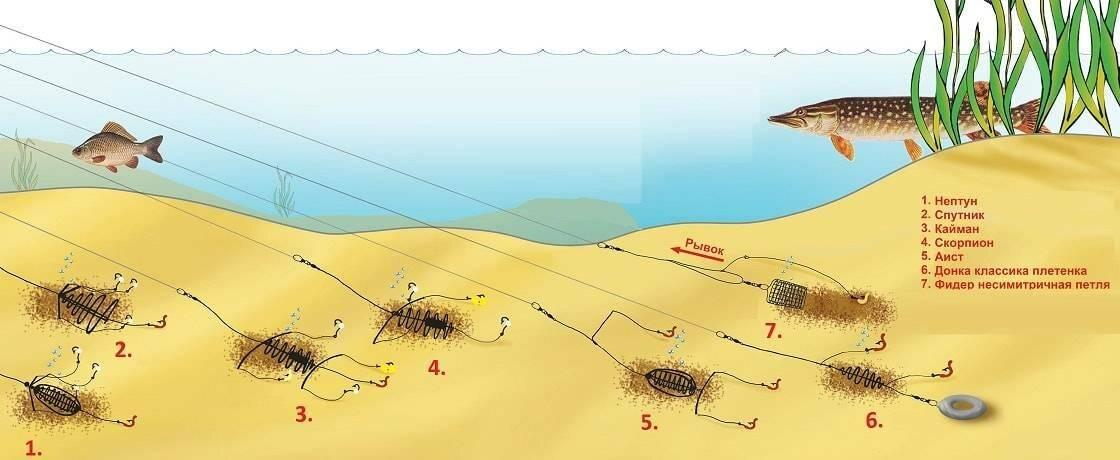 Снасти для ловли леща на течении: топ уловистых снастей