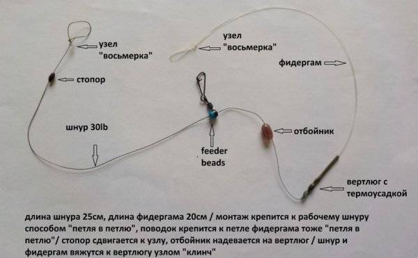 Поводок на фидер - длина, диаметр и подбор на водоеме
