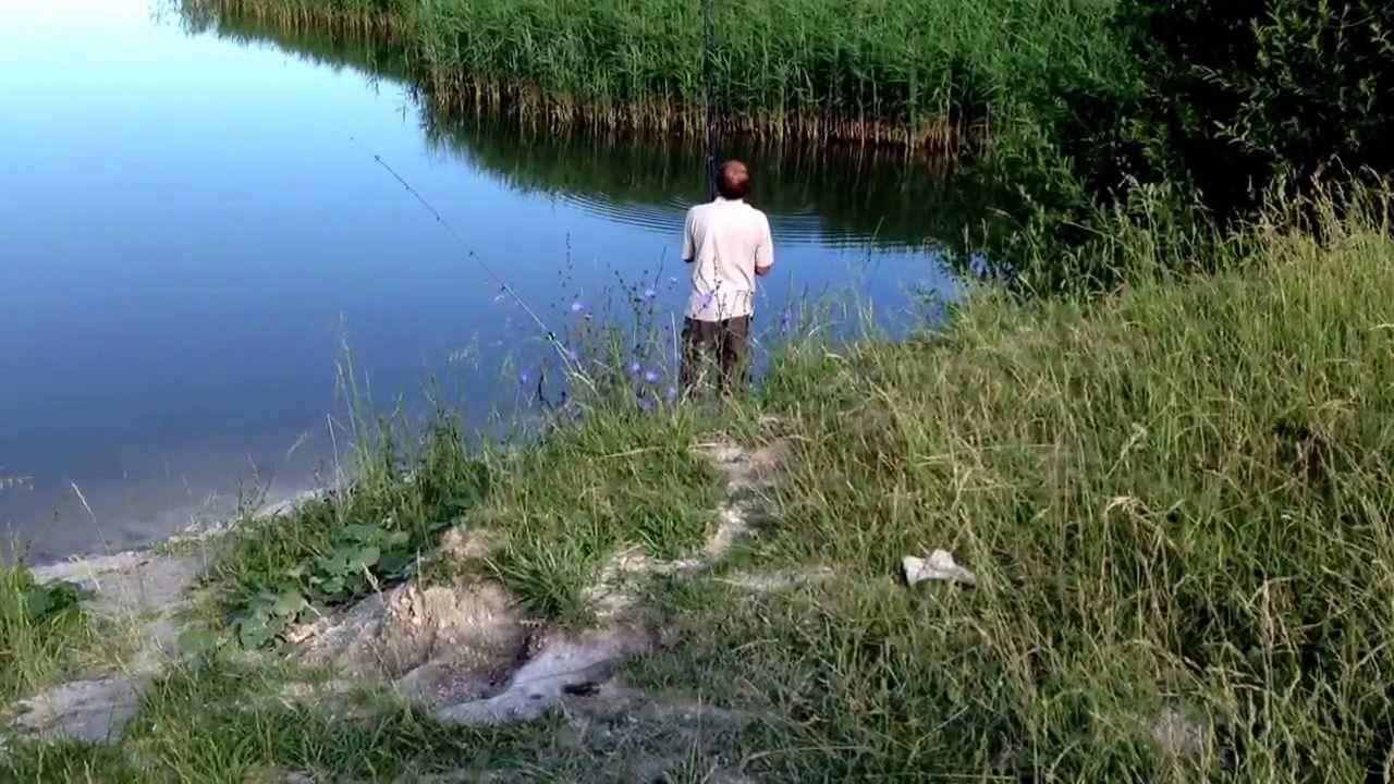 Рыбалка в белгороде и белгородской области 2020, рыбалка на хуторе крестов яковлевского района белгородской области 2020