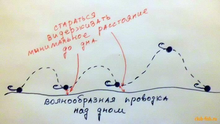 Как правильно делать проводку воблером: на щуку, окуня, голавля