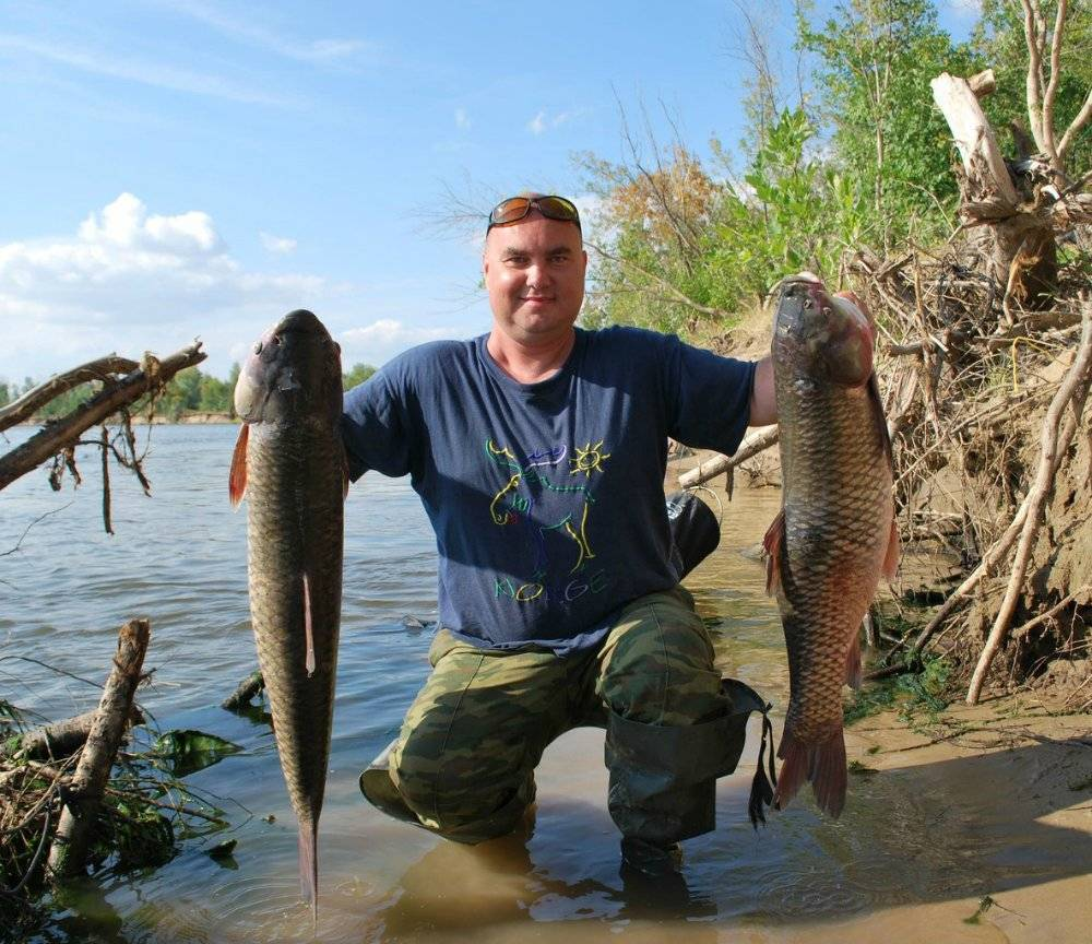 Ловля леща на ахтубе: советы, фото и видео - рыбалка на ахтубе с комфортом - база трёхречье