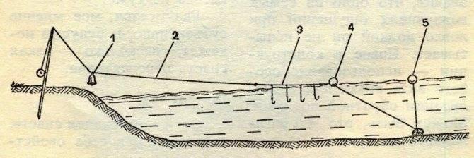 Ловля чехони на спиннинг: снасть, приманка и техника