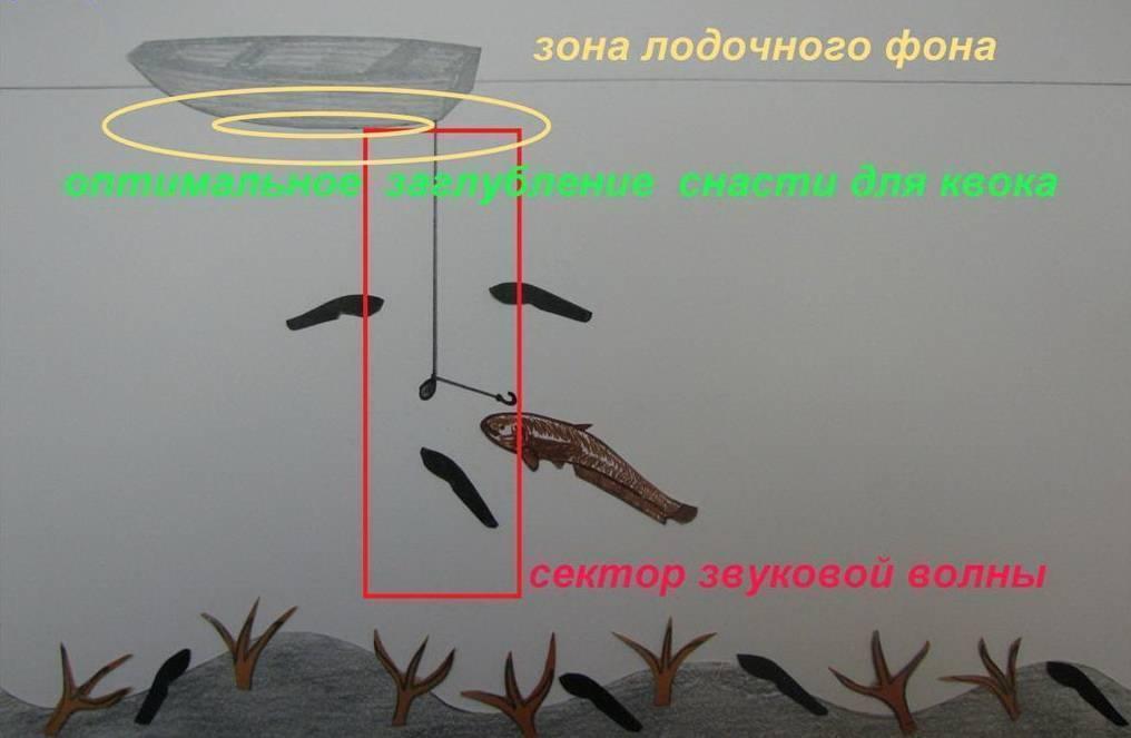 Ловля сома на квок: секреты и обучение игры квоком - рыбколов!
