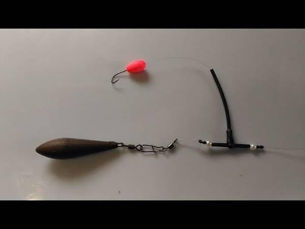 Ловля пеленгаса в июне - читайте на сatcher.fish