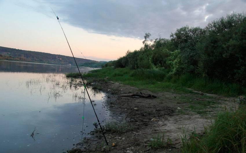 15 лучших рыболовных мест калужской области. бесплатные и платные