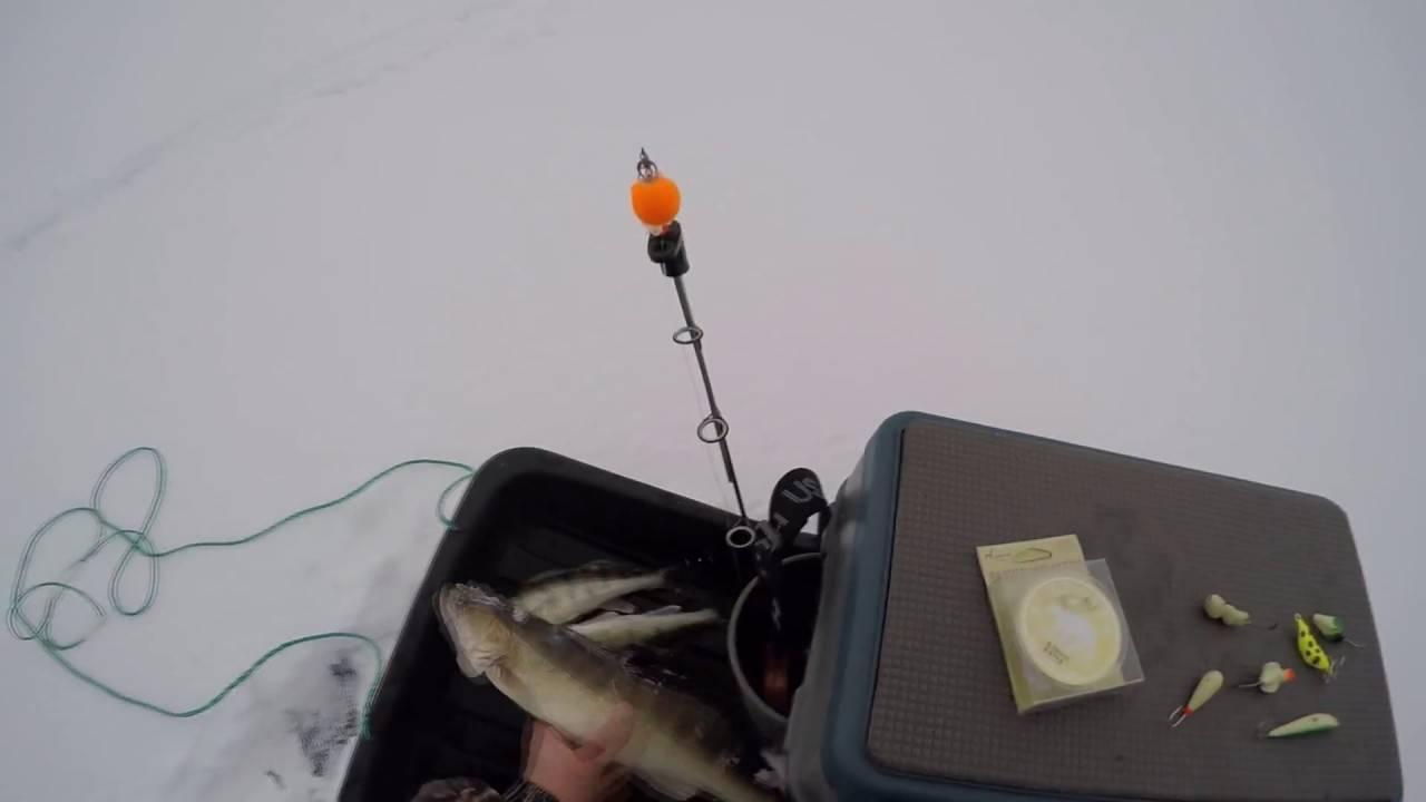 Особенности ловли судака на тюльку зимой