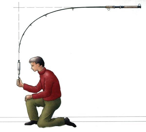Рыбалка на спиннинг | спиннинг клаб - советы для начинающих рыбаков строй спиннинга – как определить и правильно выбрать