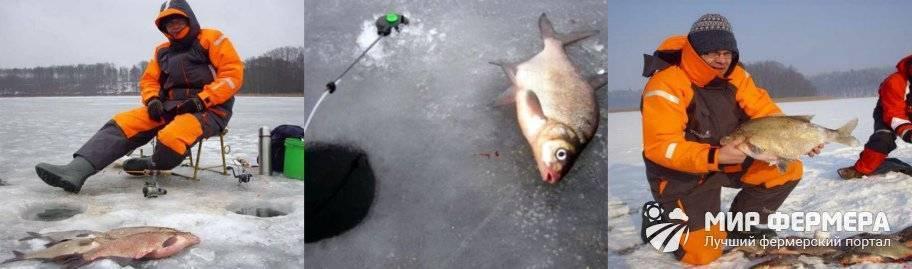 Мормышка на леща зимой: особенности выбора, техники ловли