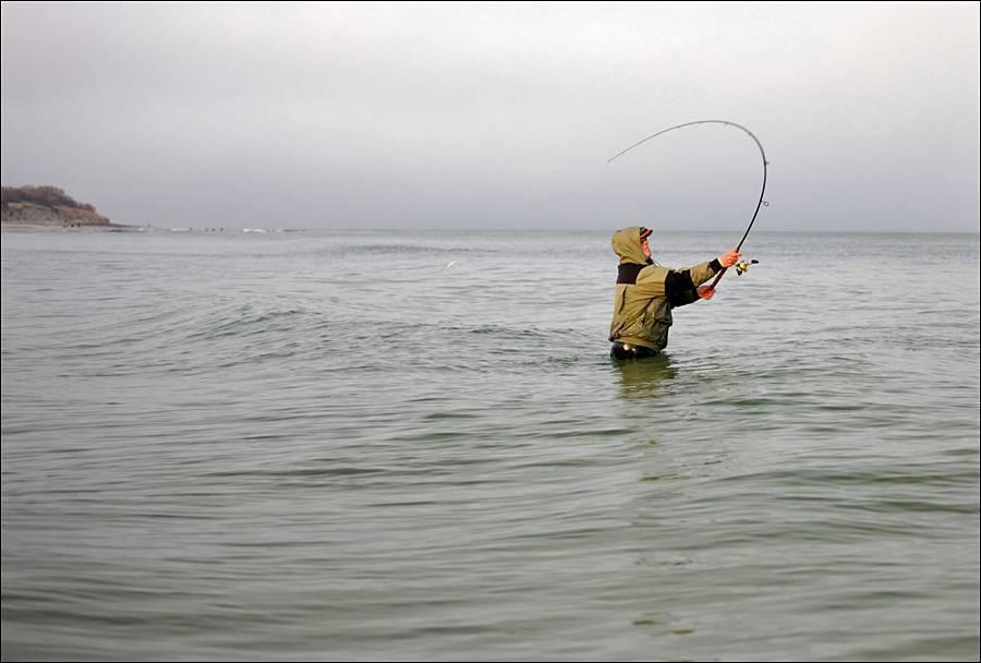 Сочи, барановское озеро — рыбалка с чувством присутствия на дикой природе