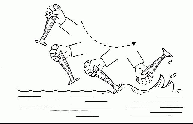 Ловля сома на квок: особенности рыбалки с лодки, лучшие снасти