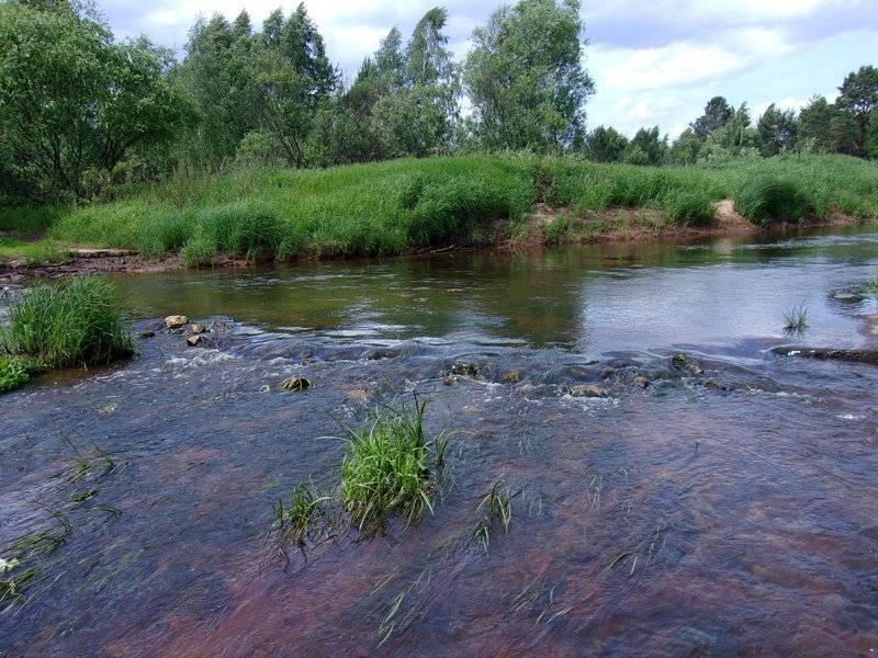 25 крупнейших рек рязанской области