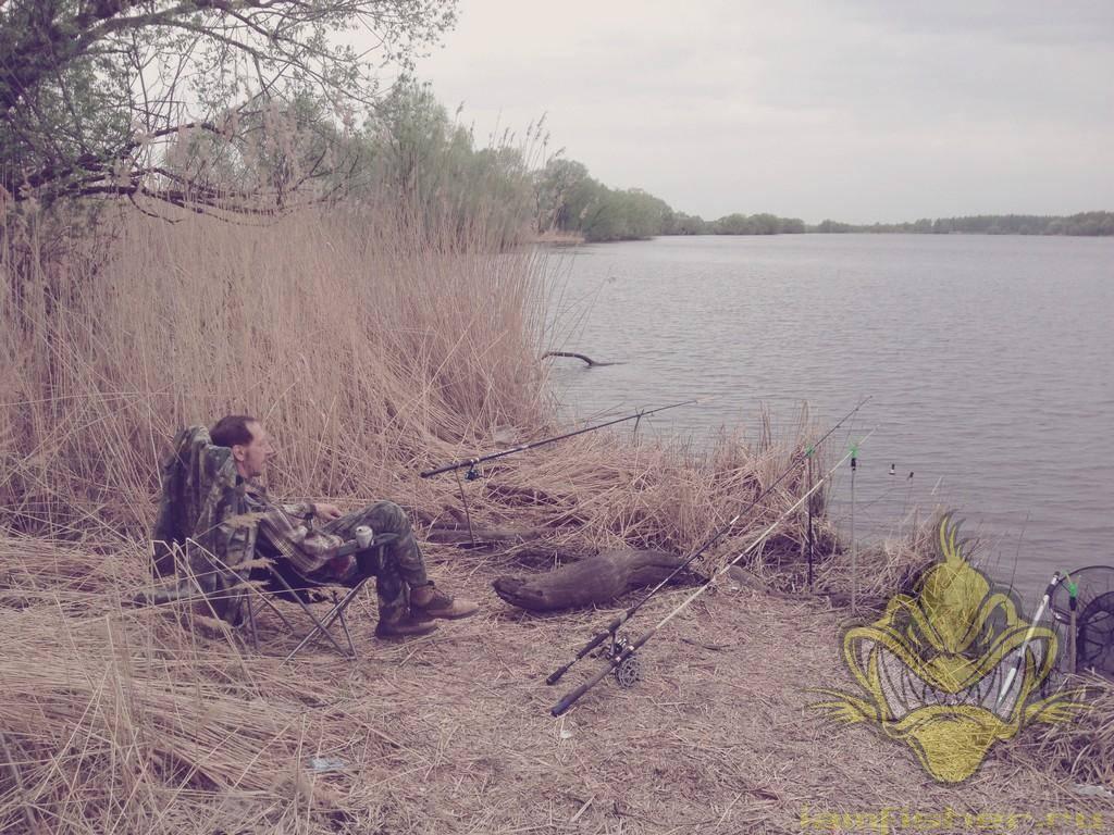 Незабываемые выходные в домике на берегу пруда (орловская область)