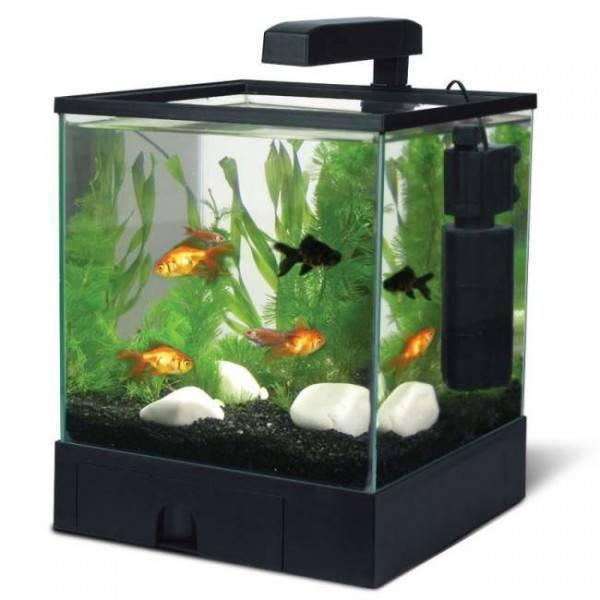 Аквариум куб биодизайн q-scape opti 15 (15 литров)