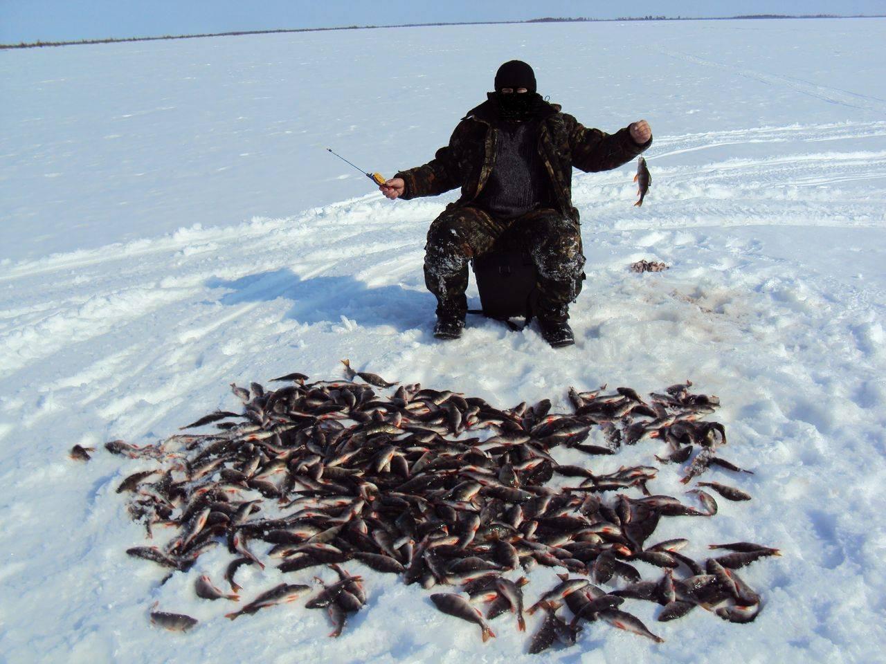 Все о рыбалке в ханты-мансийске