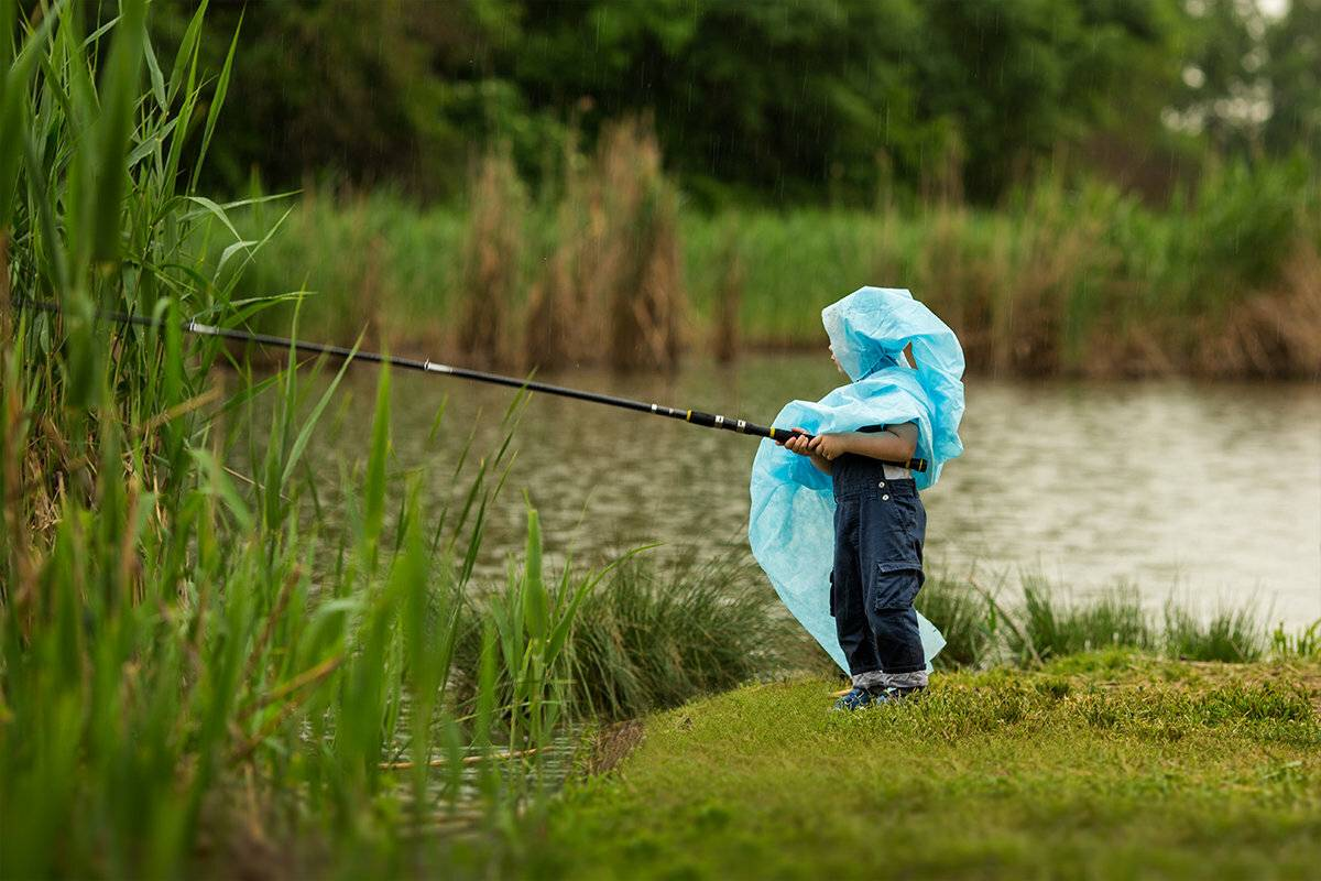 Клюет ли щука в дождь? ловля щуки в дождливую погоду