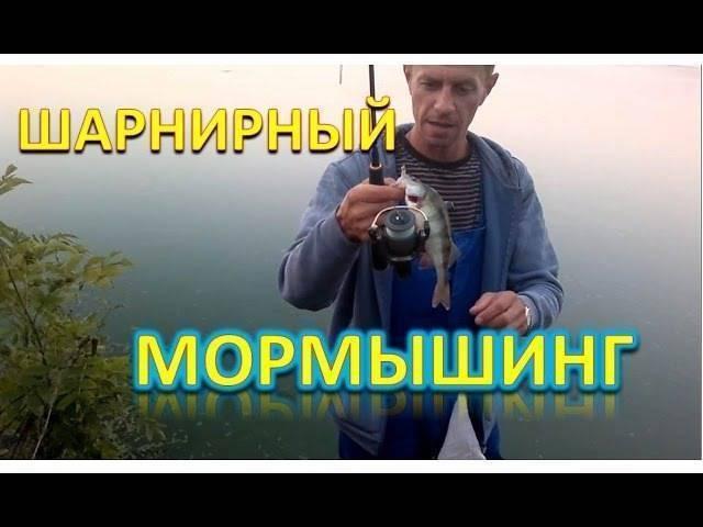 Мормышинг поневоле (дикая утка, июль 2009)