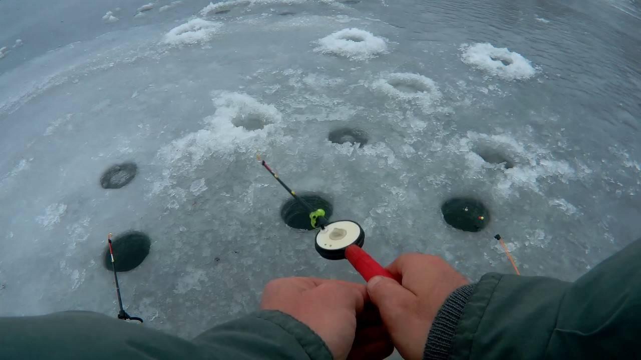 Ловля окуня зимой на блесну:техника для начинающих в подробностях