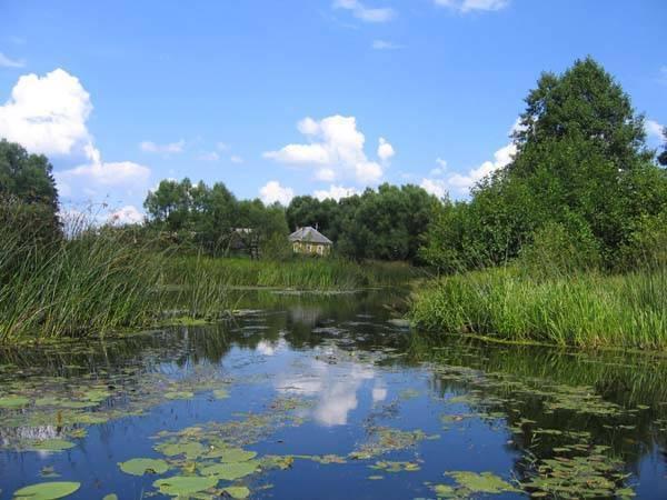 Река ока: куда впадает, характеристики, описание - gkd.ru