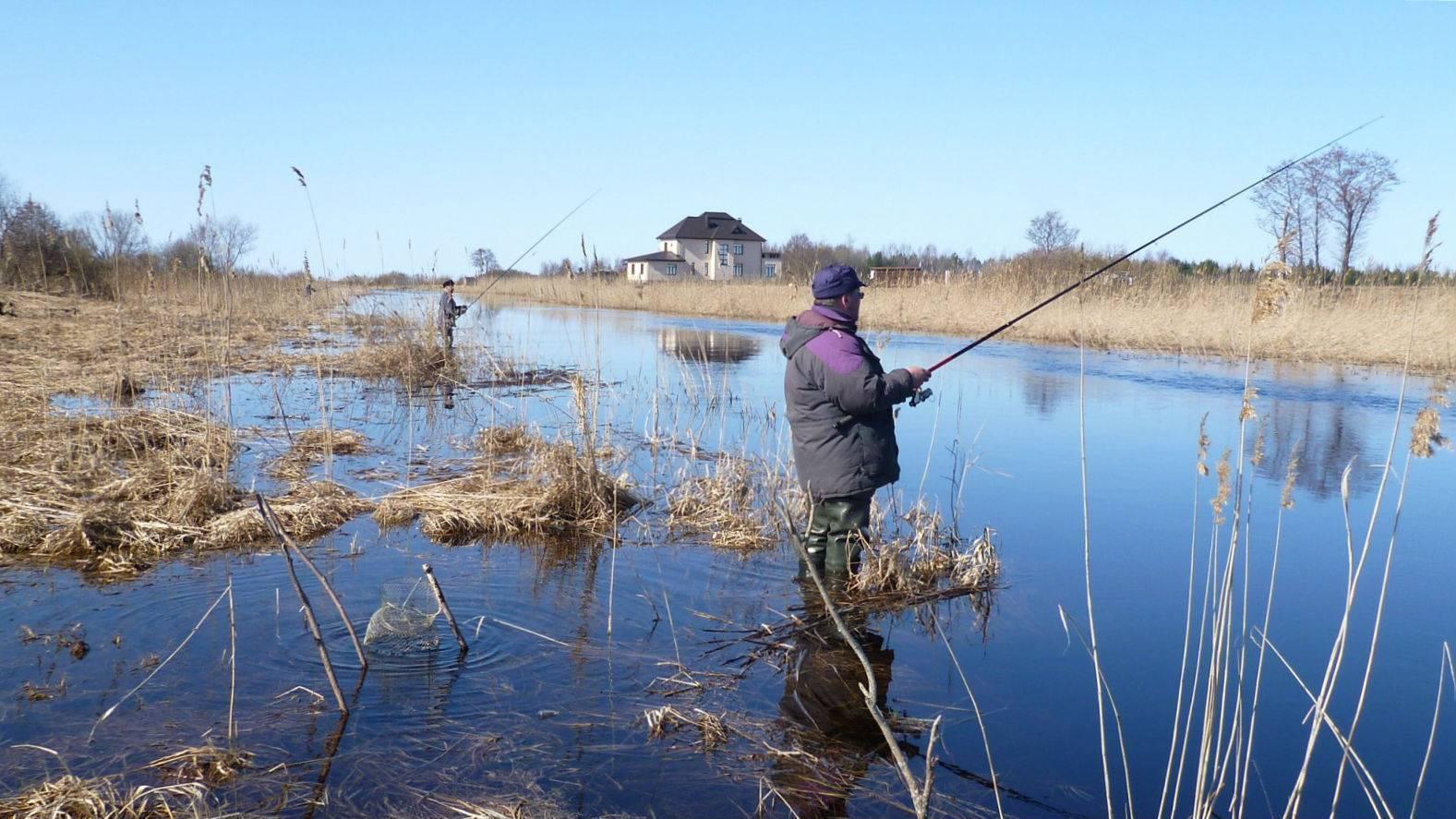 Где ловить щуку в подмосковье, лучшие места для ловли в московской области