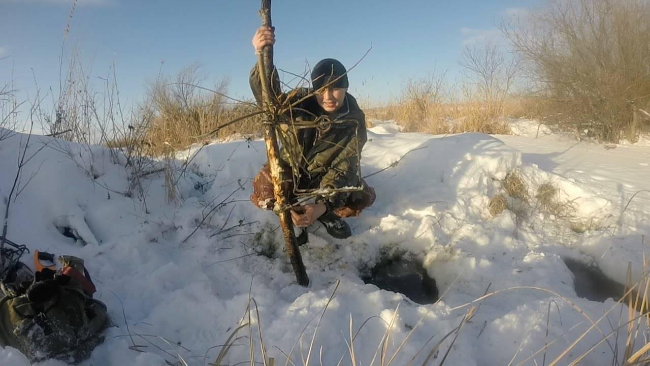 Осенняя охота на бобра