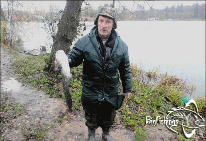 """Обзор платной рыбалки """"три пескаря"""" — цены, услуги, правила"""