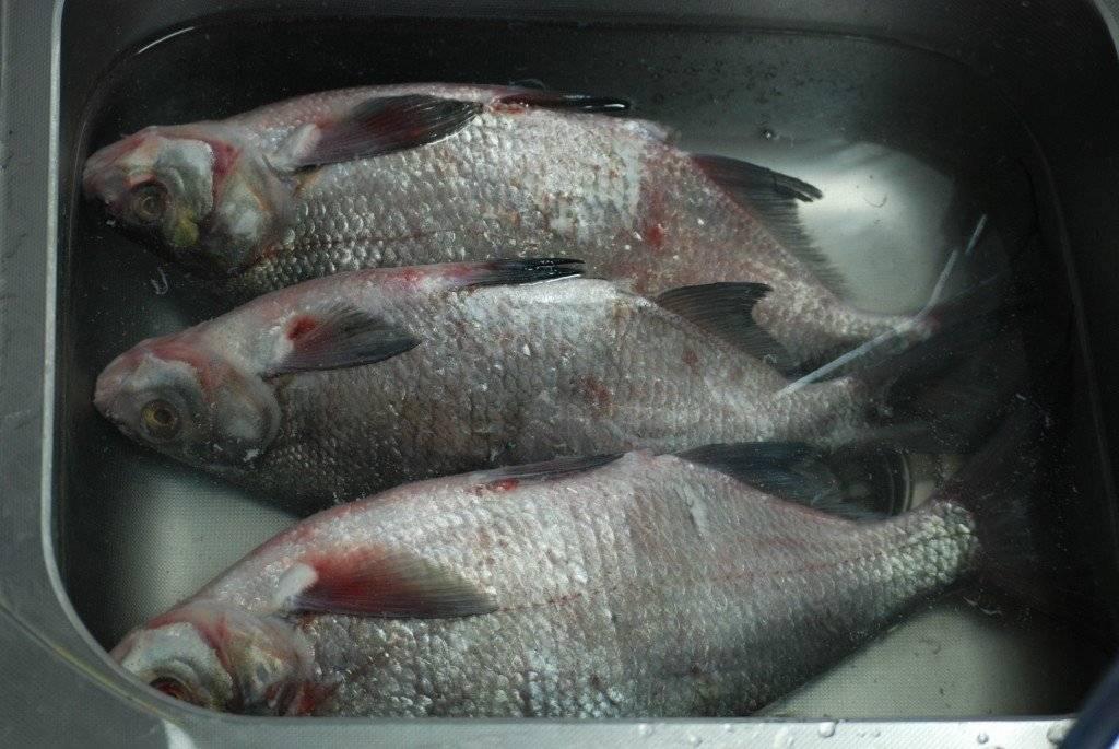 Как правильно вымочить соленую рыбу в домашних условиях