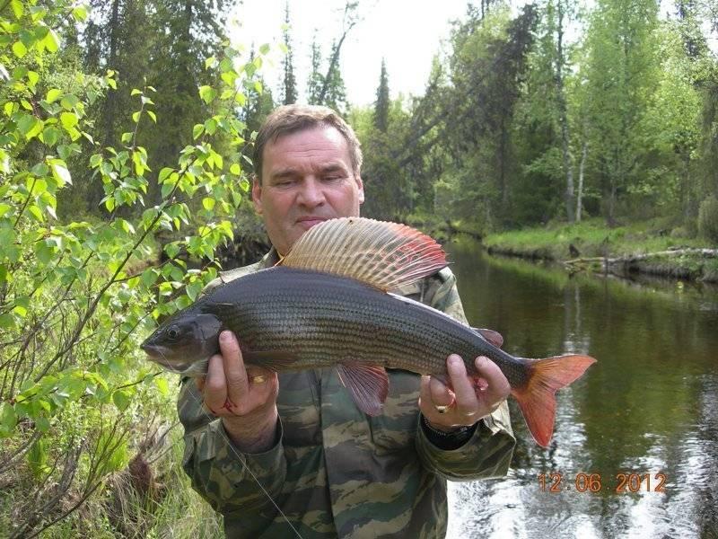 Телецкое озеро: 10 популярных баз для отдыха и рыбалки