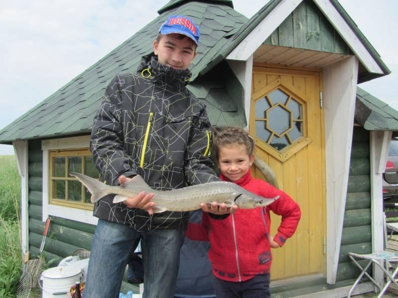Рыбалка на львовских прудах – интернет-журнал о рыбалке