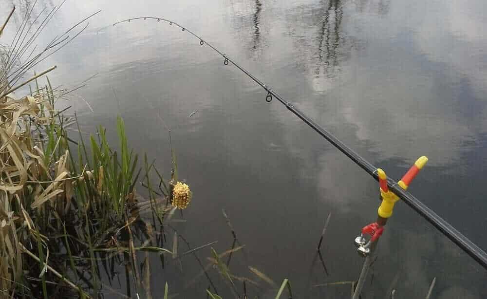 Городская рыбалка на Днепре— ловля на фидер
