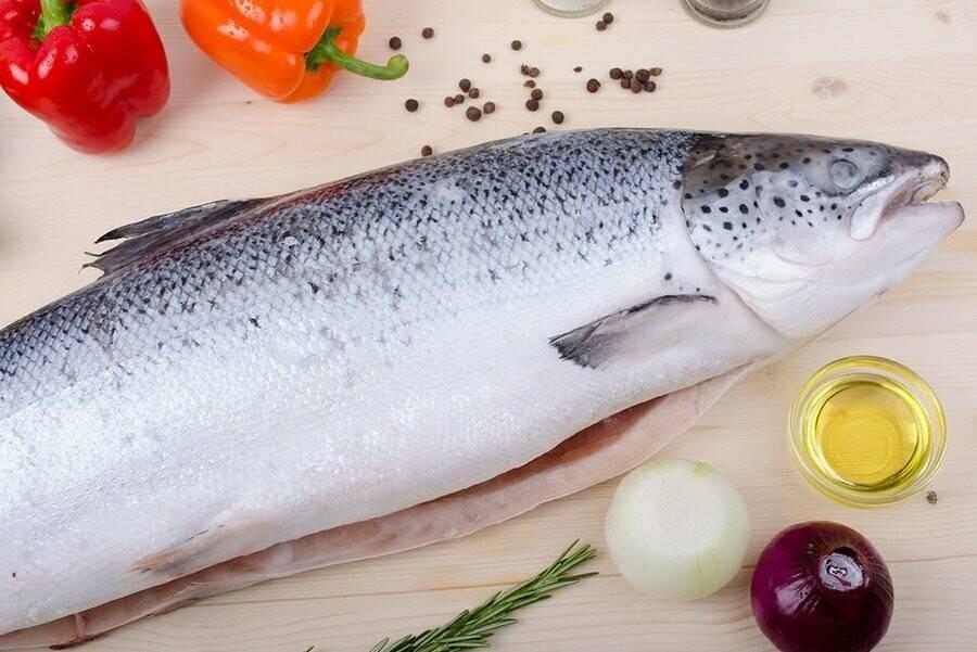 Сибас (рыба): польза и вред, как приготовить