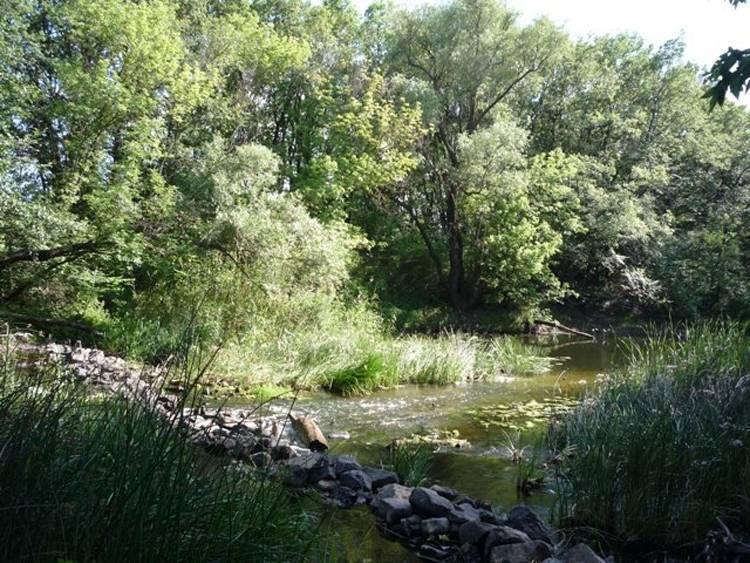 Река тура - приток тобола