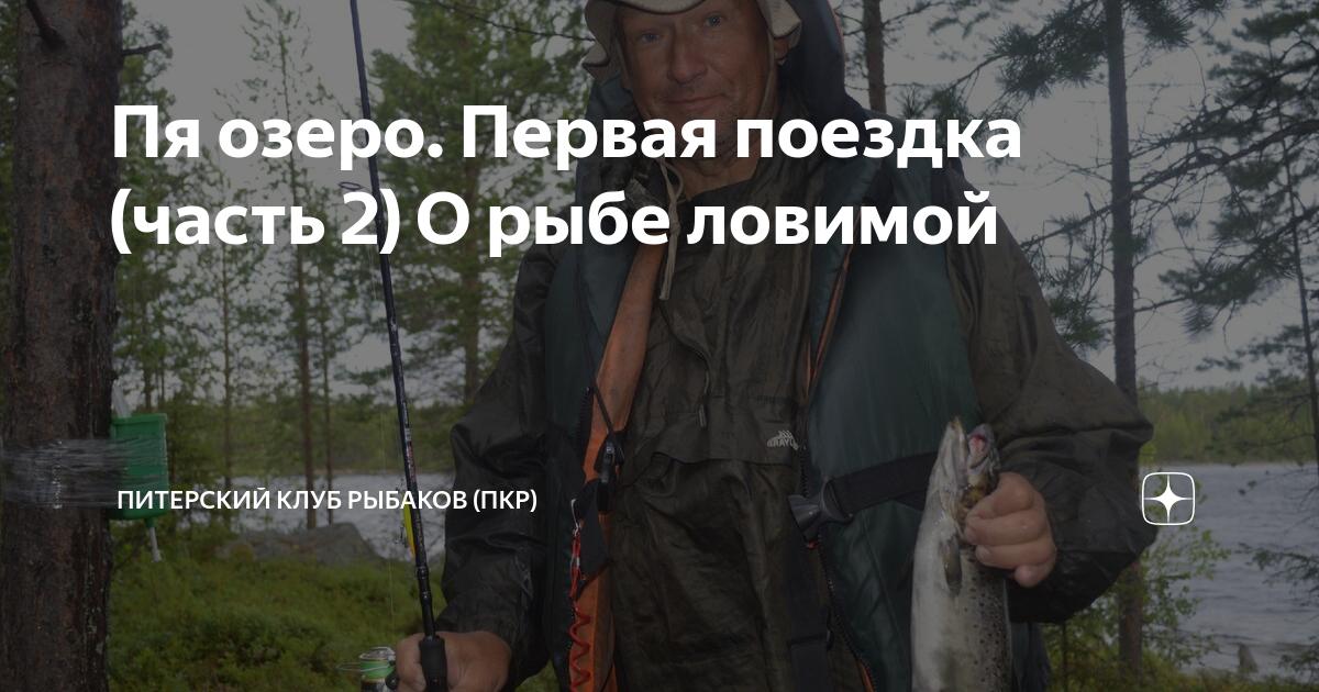 Где в краснодаре самые рыбные места   новости краснодара и юга.