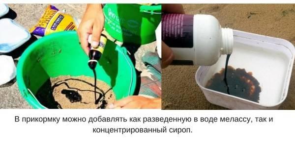 ᐉ как использовать мелассу для рыбалки - ✅ ribalka-snasti.ru