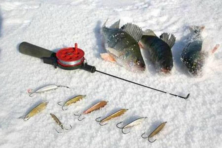 Зимние жерлицы для ловли щуки, окуня, налима, судака