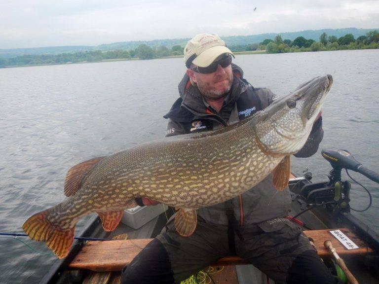 Самая крупная пойманная щука в россии – рыбалке.нет