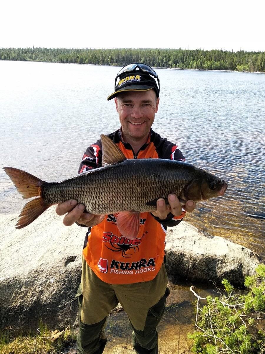 Зимняя рыбалка в карелии: цены, фото, видео | база отдыха «сорола»