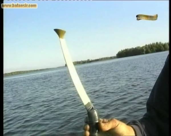 Ловля сома в июле - читайте на сatcher.fish