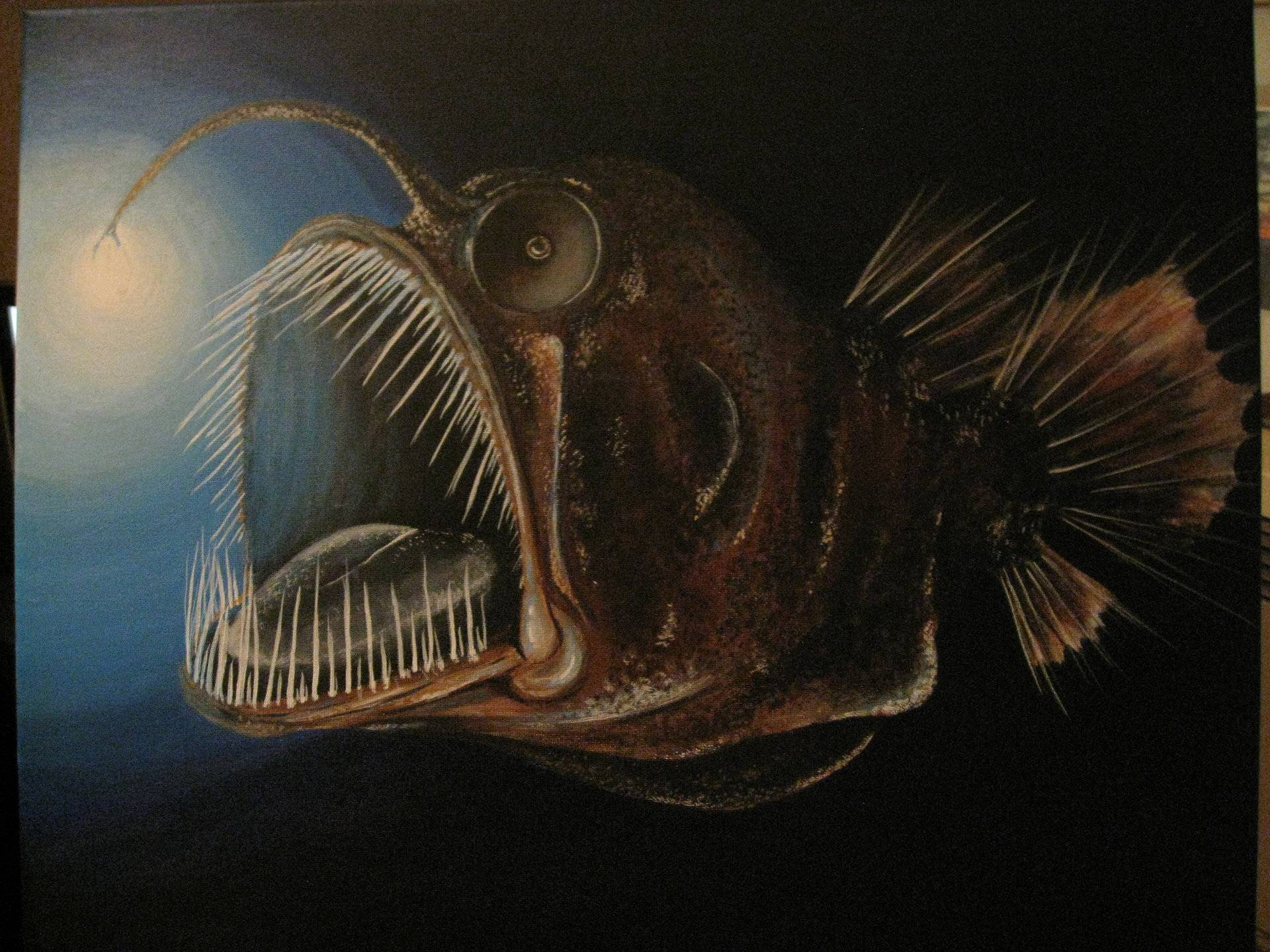 Глубоководная рыба с фонариком: где обитает и как называется