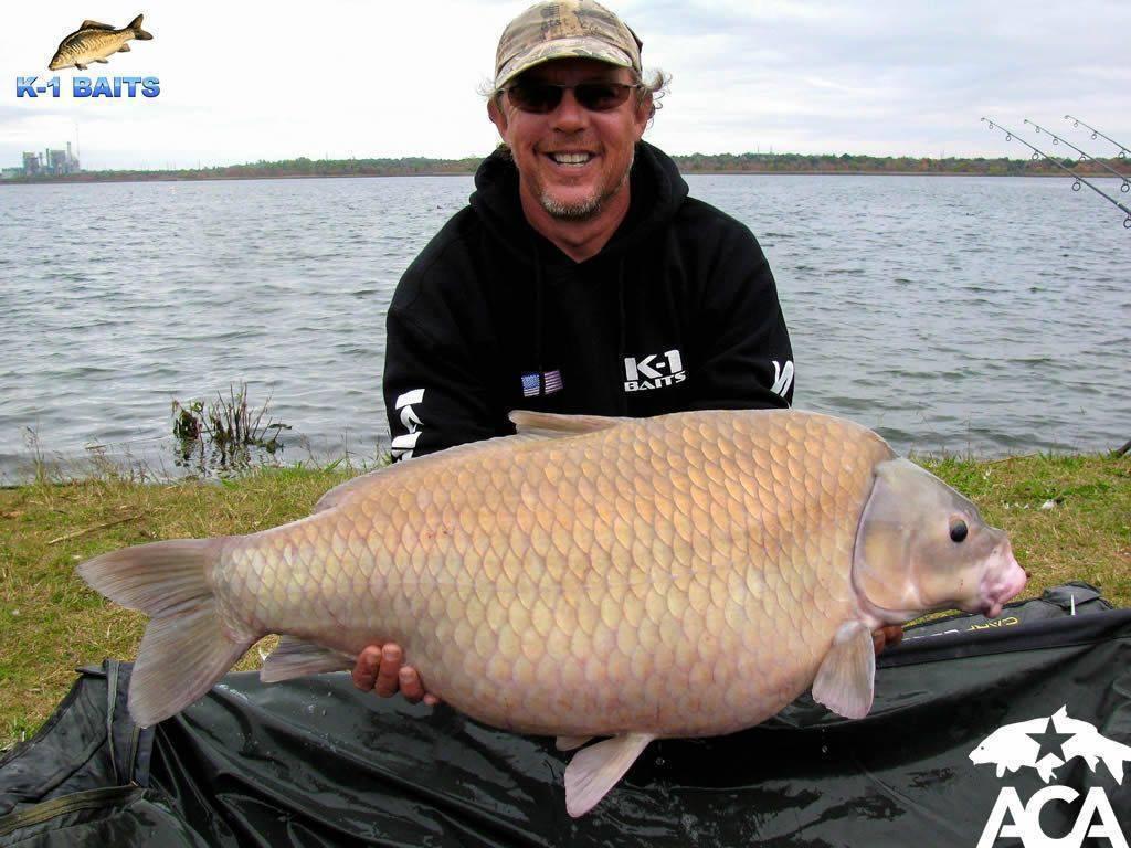 Рыба без костей: список названий речных и морских представителей