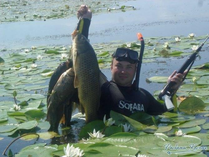 Рыбалка и отдых в Астрахани по временам года и месяцам — когда лучше ехать?
