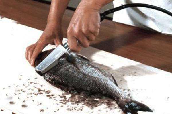 Лайхаки: как почистить окуня