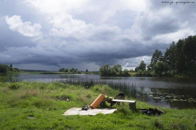 Рыбалка в тверской области: как рыбачить на волге, медведице, озере щучье в твери
