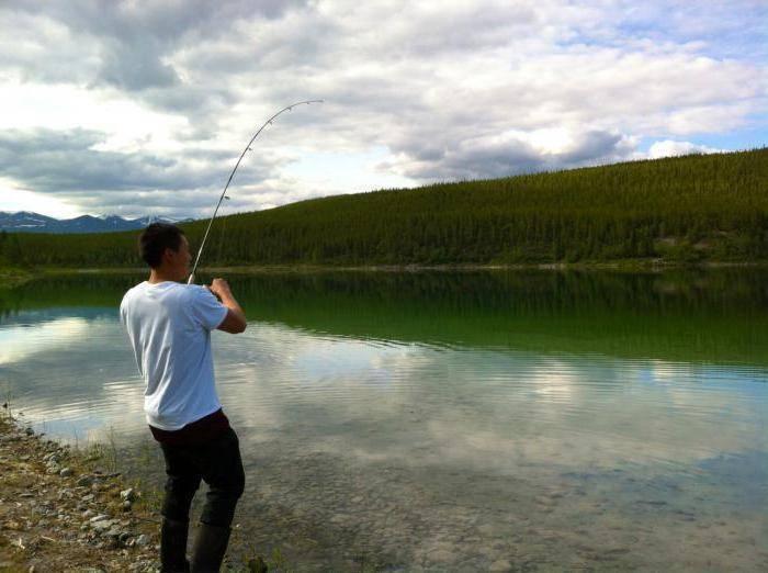 Рыбалка в Алматинской области: места и разновидности рыбы