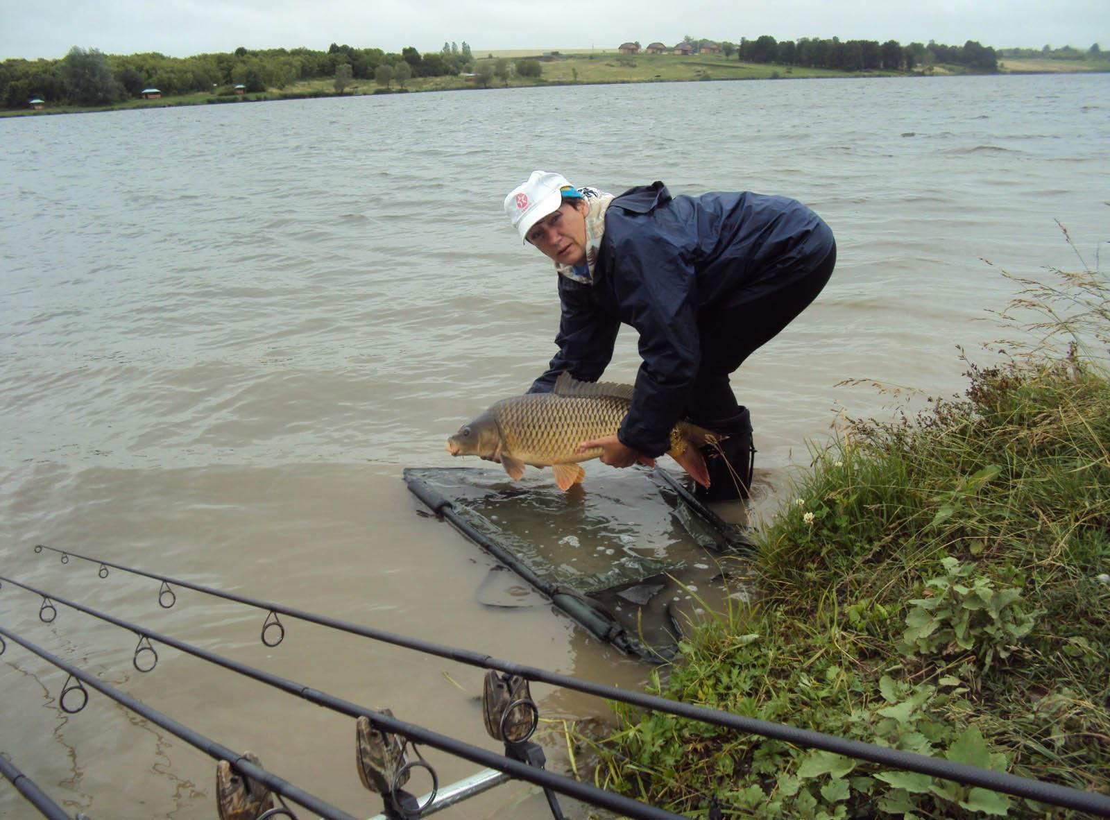 Платная рыбалка в стрелецком ручье
